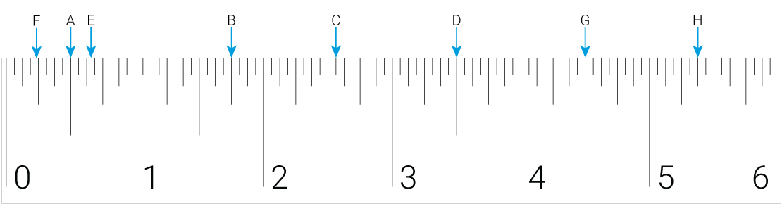Picture of a 6 inch ruler.